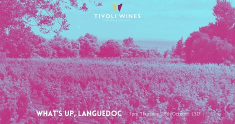 What's Up, Languedoc - The Wines of the Languedoc-Roussillon