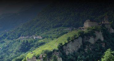 Top 9 Italian Wines Under £15