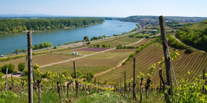 A New Era for German Wine
